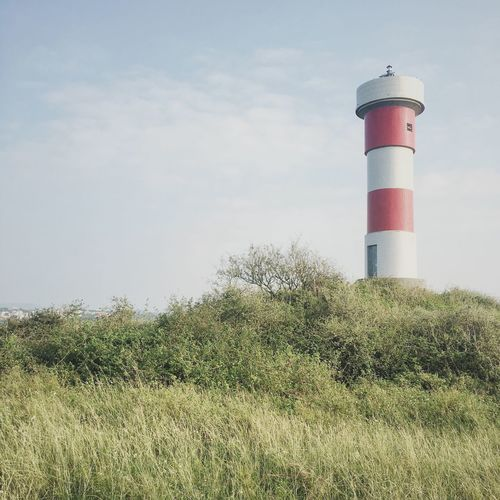 Lighthouse Safety Field Built Structure Architecture Guidance Sky Day Nature Grass Growth Tree Building Exterior No People Outdoors Landscape