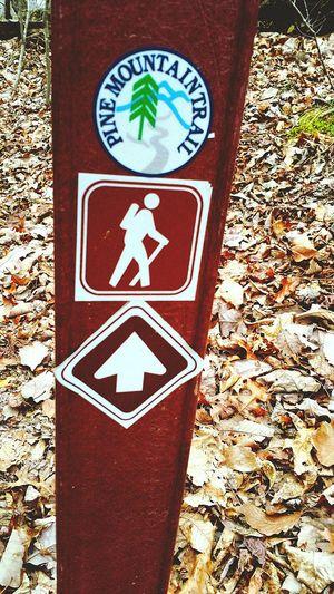 On A Hike Pine Mountain! Georgia Camping