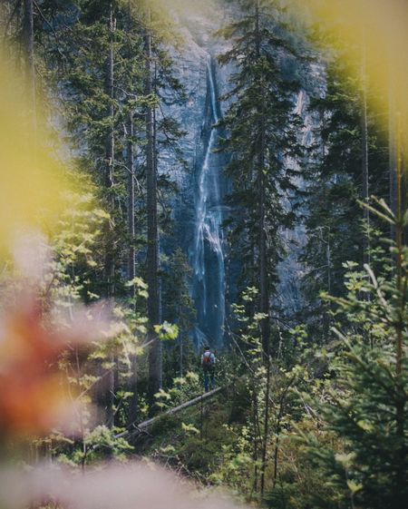 Water Waterfall The Great Outdoors - 2016 EyeEm Awards Outdoors Landscape Nature Forest Switzerland The Essence Of Summer