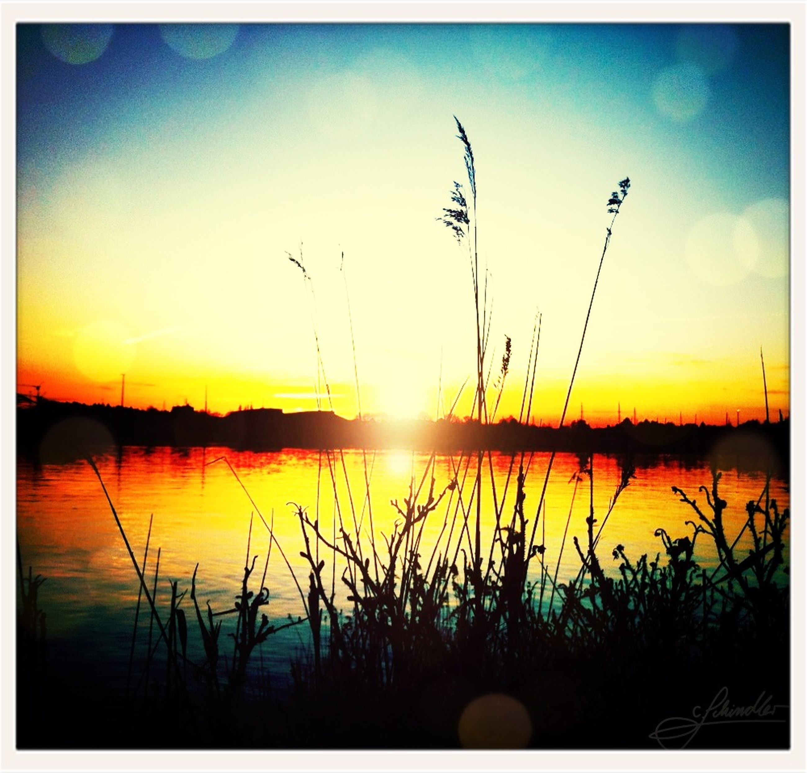 sunset, transfer print, water, tranquil scene, tranquility, sky, scenics, beauty in nature, lake, silhouette, plant, auto post production filter, nature, reflection, sun, idyllic, growth, cloud, outdoors, grass