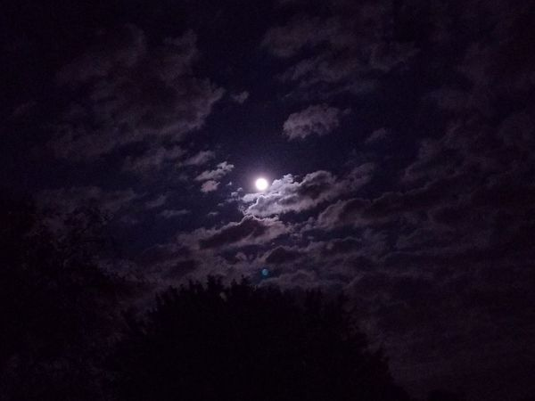 Night Moon Nature Scenics Astronomy Sky Beauty In Nature Lightning Space Outdoors No People Low Angle View Star - Space Milky Way Power In Nature Illuminated Tranquility Moonlight Clouds Clouds And Sky Pennsylvania Galaxy Had fun with the moon and clouds tonight