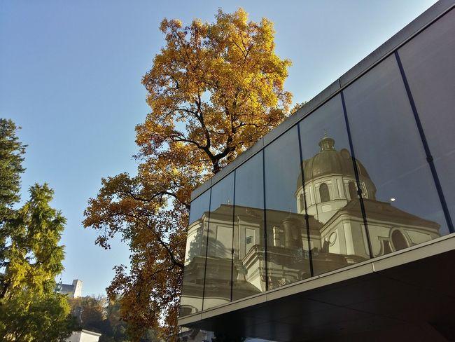 Blue Sky Church Fenster Furtwenglerpark Kollegienkirche Mirrorimage Salzburg Salzburg Oldtown Spiegelung Sunny Day Tree Universitätskirche Window Yellow Leaves