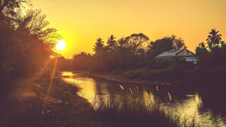 @ Native Sunset Check This Out Relaxing JP Photografy Nature