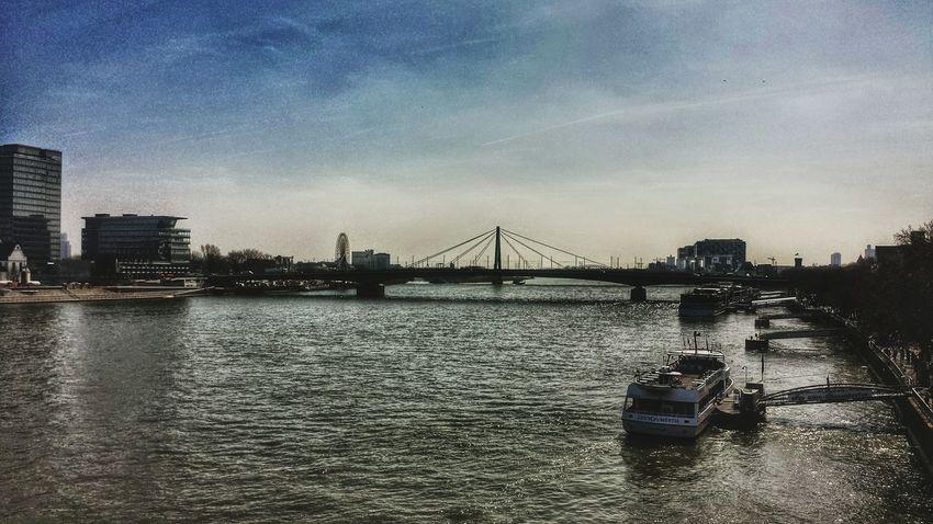 Rhein Cologne Köln Fluss Rheinbrücke
