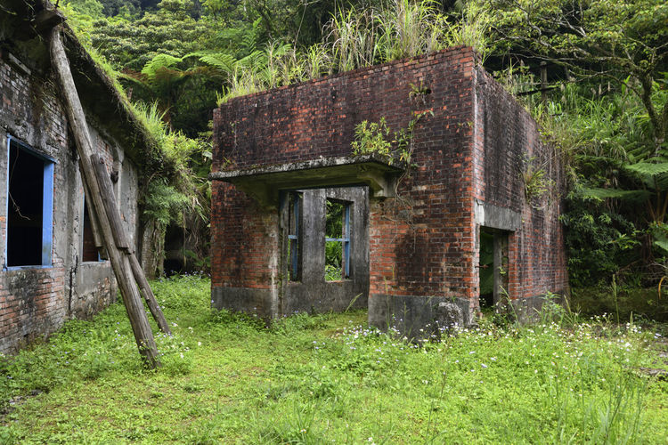 Mining site ruins ruins Remains Ruins Abandoned Ancient Civilization Architecture Building Building Exterior Built Structure Day Door Entrance Field Grass Green Color History Land Mining Mining Area Nature No People Old Outdoors Plant The Past Tree