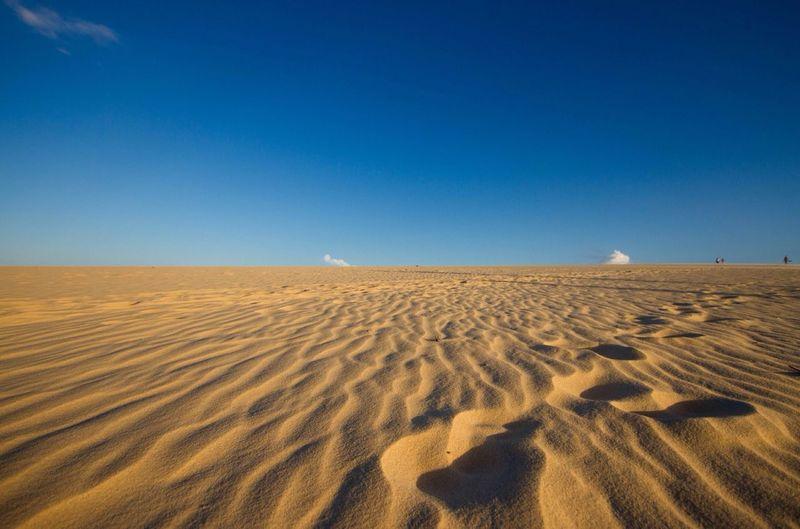 Desert Sand Golden Hour Golden Sand Dunes Blue Sky Patterns In Sand Pattern