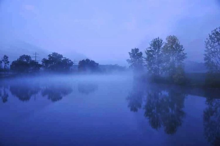 foggy morning @ Aare Riverscape Loveriver Hello World Goodmorning EyeEm