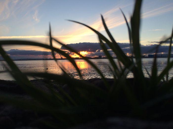 Clouds Sky Coast Seaside Nowater Sunset Nature