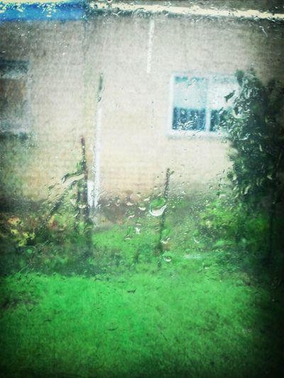 Hello Rain!