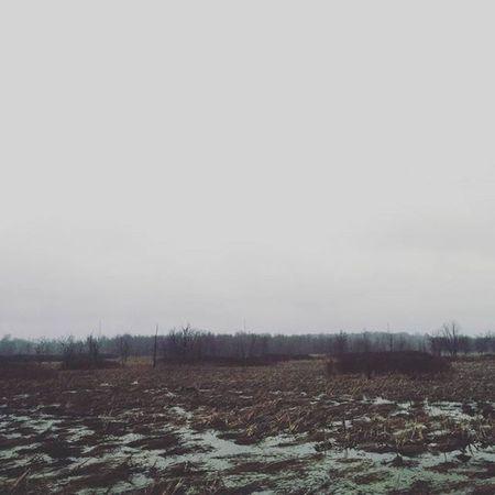 Something about this field . . . . Haunting  Wintermeltdown Ontario Kingston_ontario Canada