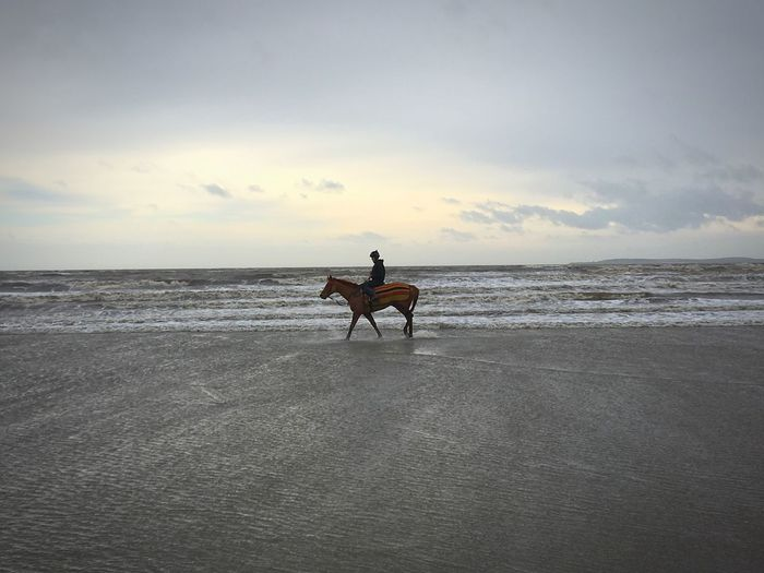 Man riding horse at beach against sky during sunset