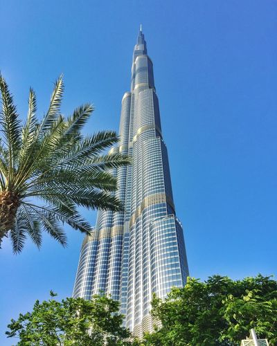 Dream as high as the tallest building in the world. 💕 #travelphotography #traveltheworld #Dxb #visitdubai #Dubai #photography #EyeEm #photography #photo #photos #pic #pics #TagsForLikes #picture #pictures #snapshot #art #beautiful #instagood #picoftheday #photooftheday #color #all_shots #exposure #composition #focus #capture #moment Sky Low Angle View Architecture Built Structure Plant Tree EyeEmNewHere Tall - High Blue Building Nature Building Exterior Tower Travel Destinations Outdoors Tourism Clear Sky City Day