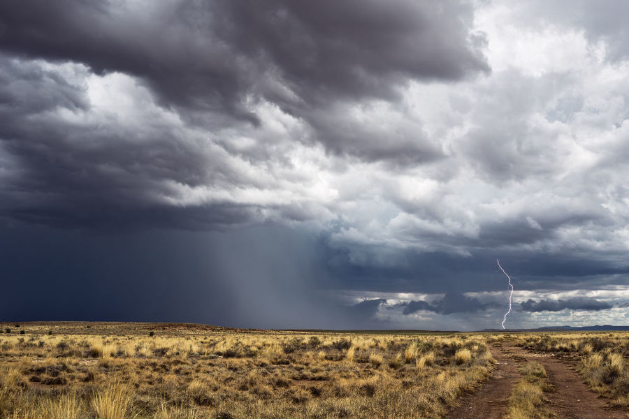 Thunderstorm Arizona Cloud Cloudy Dark Desert Rain Road Storm Thunderstorms Weather Beauty In Nature Clouds Day Horizon Landscape Lightning Nature Outdoors Overcast Scenics Sky Storm Clouds Stormy Thunder Thunderstorm
