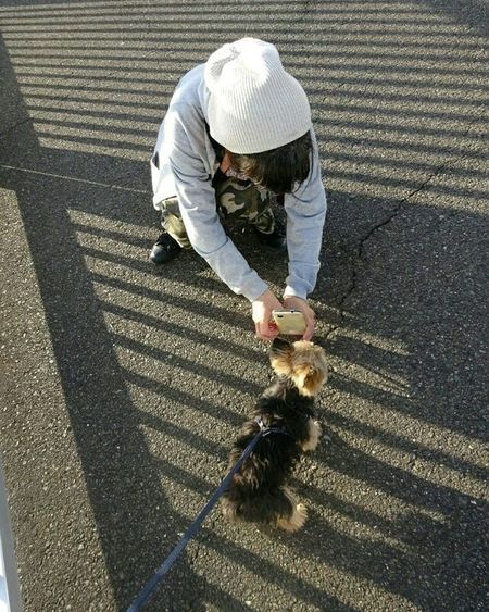 * Nagoya Japan Everyday Life Lovely 素敵 スナップ Nice いいね Bestnatureshot ペット Pet 犬 Super Yorkshireterrier 可愛い ヨークシャテリア Cute Igworldclub Worldbestgram Dog Dog Puppy Pup Like dogs_of_instagram follow beautiful aichi pet_japan_nagoya_yama 🎶