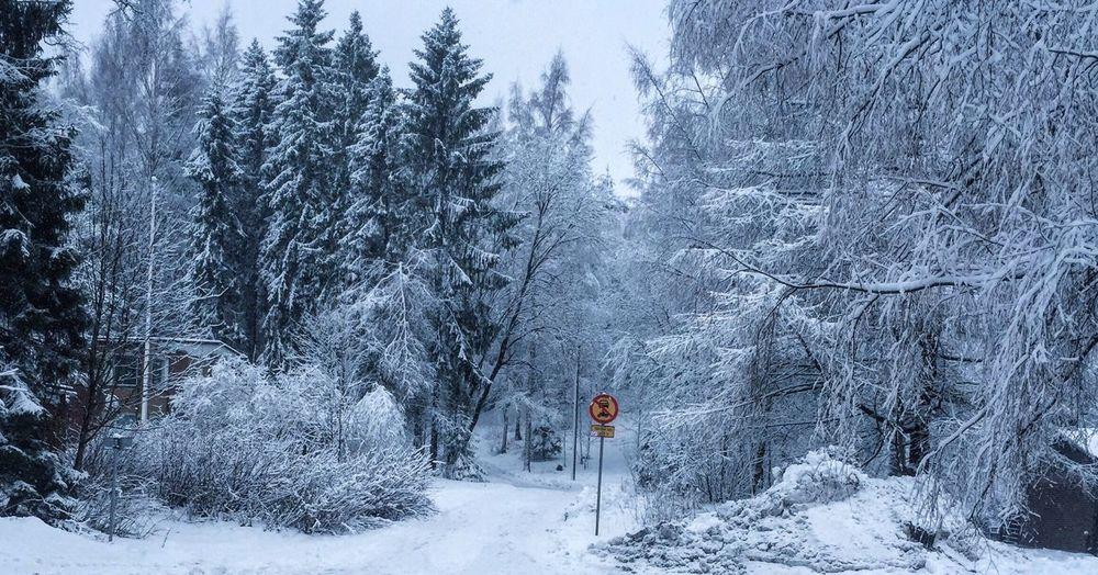 Finland First Eyeem Photo