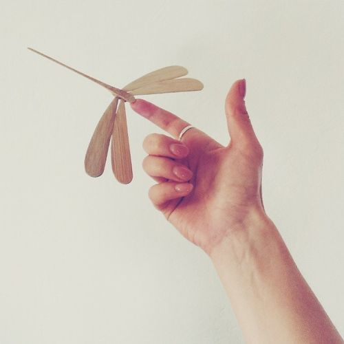I visited my ex-flatmates today and they showed me these greately-balanced wooden dragonfly they bought on their last trip to Vietnam. Isn't it cool? You can literally put it on its tip on any surface and it won't fell! Details Minimalistic Igersberlin Design vsco vscocam hands