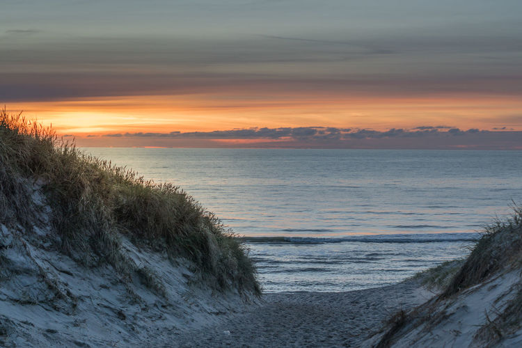 A Way To The Beach With View Tu The Water Beach Beauty In Nature Cloud - Sky Day Horizon Over Water Hvide Sande, Denmark Landscape Nature No People Outdoors Sand Sand Dune Sea Sky Sunset Tranquil Scene Tranquility Travel Destinations Tree Vacations Water Yellow Sky