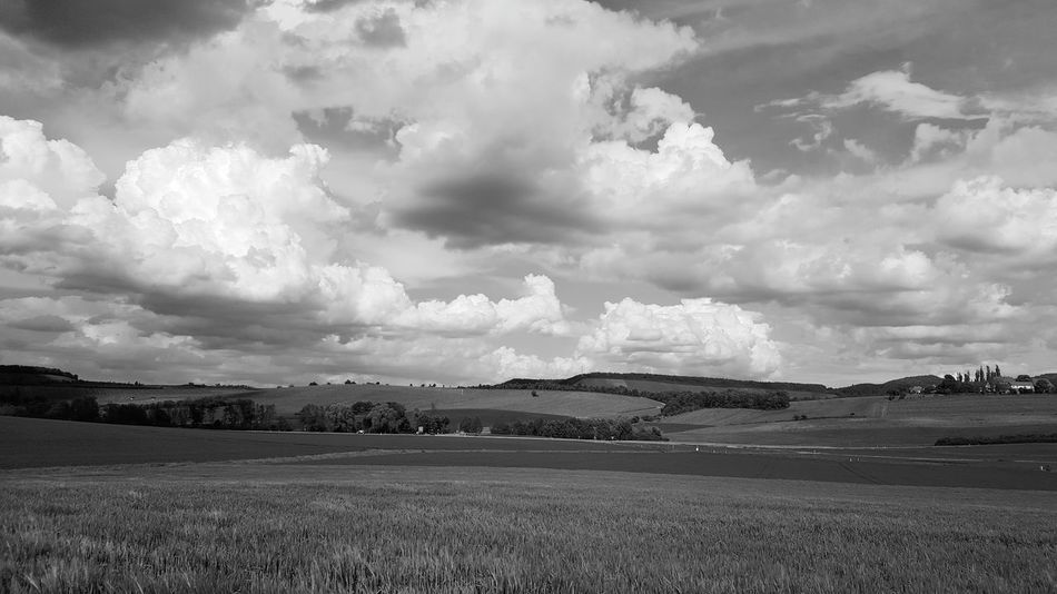 Field Landscape Cloud - Sky Nature Beauty In Nature No People Sky Outdoors Monochrome Black And White Photography Black&white Black & White Cloud_collection  Cloudscape Clouds And Sky GERMANY🇩🇪DEUTSCHERLAND@ Landscape_Collection Fantastic_earth Nature Photography Nature_collection EyeEm Best Shots Fotography Outdoors Photograpghy  The Week On Eyem Löwensteiner Berge