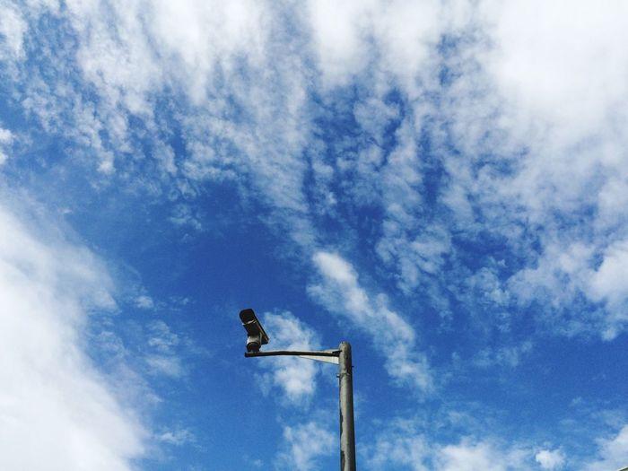 今天的天蓝得有些不像话