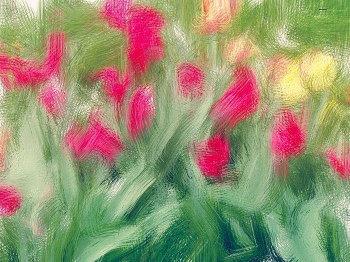 Tulips Stylised Edited Paint Edit Flowers Colours No Frame Painted Oil Painting Photograph Millennial Pink