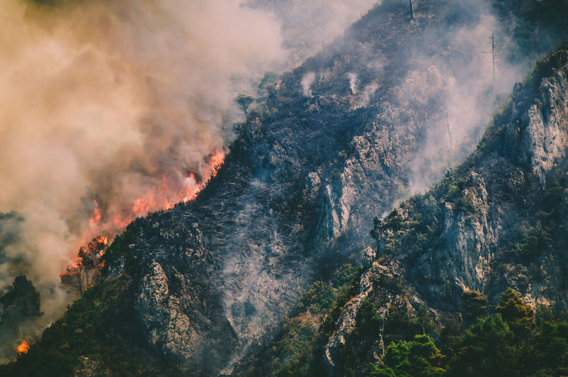 Aerial View Of Fire In Forest