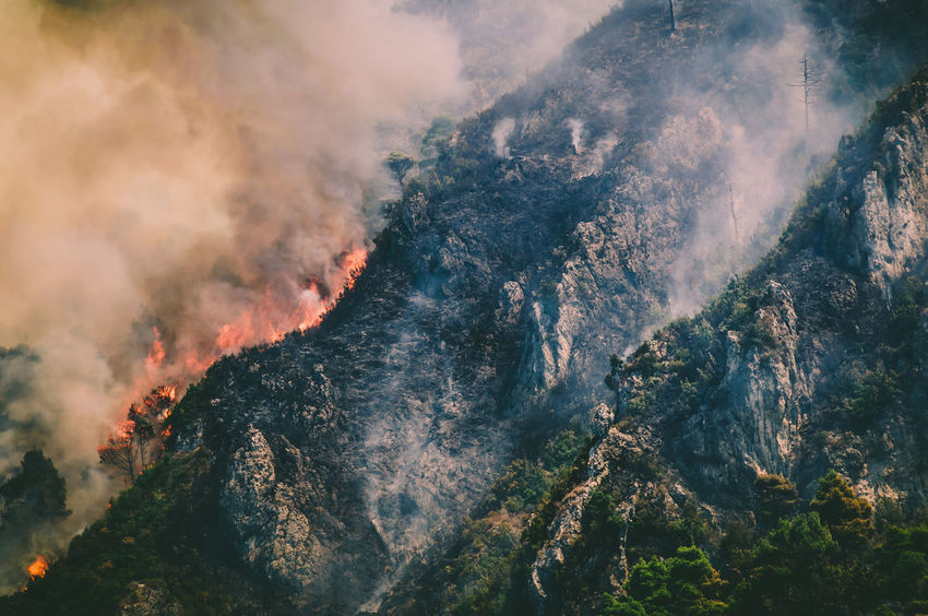 FireFighting  Burning Danger Fire Forest Fire Mountain Nature No People Scenics Tree