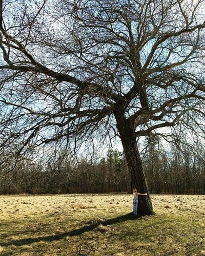Hanging Out Taking Photos Check This Out Hello World Enjoying Life Outdoors EyeEm Gallery Tadaa Community Mobile Photography Beautiful Samsung Galaxy S7Eye4photography  EyeEm Best Shots Enjoying Life Tree Tree Hugger Hugging A Tree Nature Outside Tree_collection  Nature_collection Woods Nature Photography Spring Sunny Day