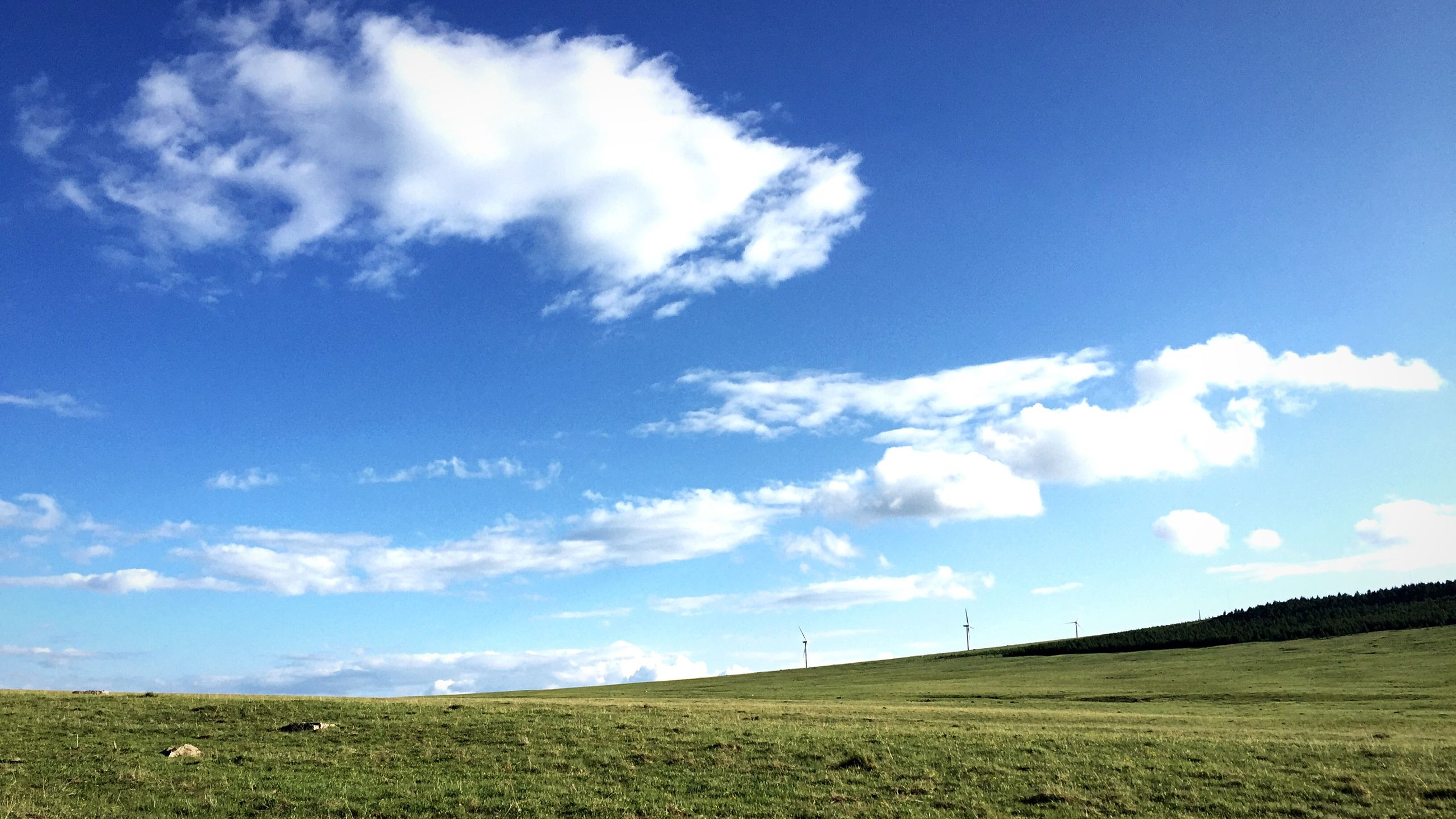 sky, field, landscape, grass, tranquil scene, tranquility, blue, scenics, cloud, rural scene, beauty in nature, cloud - sky, nature, horizon over land, agriculture, grassy, farm, day, remote, outdoors