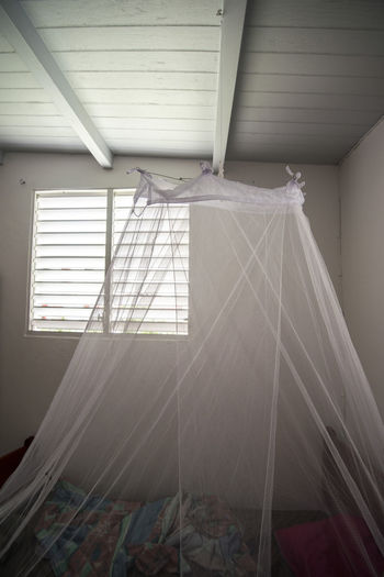 mosquito net Bite Ceiling Day Detail Hanging Mosquito Mosquito Net Net No People Protection Room Tropical Climate Window Wood