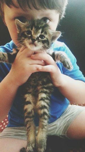 Toddler  Kitty!  Boys