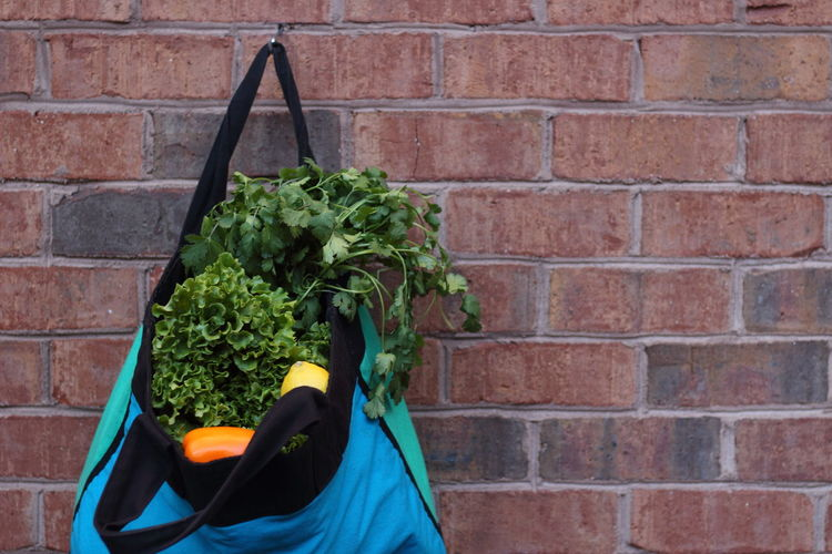 Groceries in bag hanging on brick wall