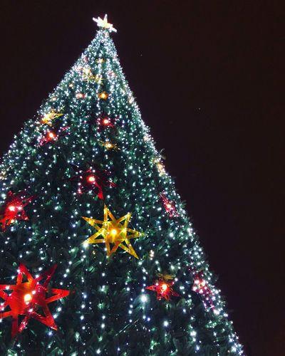 Christmas tree Celebration Christmas Decoration Illuminated Night Christmas Lights Tradition Christmas Ornament Tree Topper