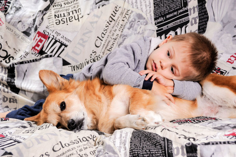 Love Animal Themes Dog Domestic Animals Friendship One Animal One Person People Pets Real People Relaxation