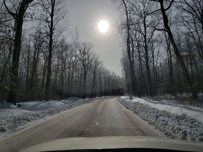 Sun Tree Snow Winter Cold Temperature Road Car Sky Car Point Of View Windshield Bare Tree Road Trip Branch Country Road Treelined Dashboard Lone Car Interior
