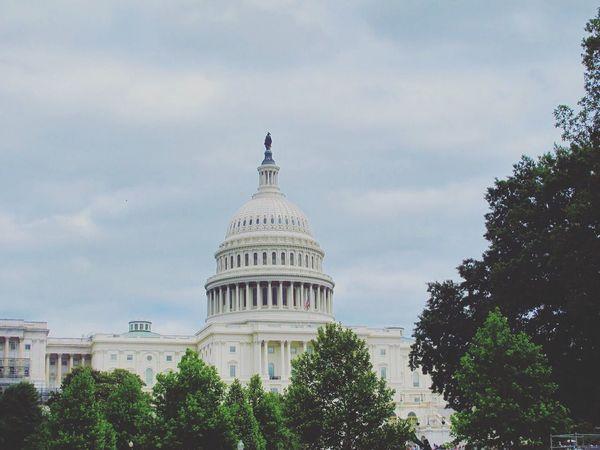 Architecture Building Exterior Capitol Building City Government Outdoors Washington, D. C.