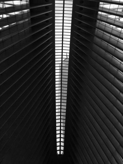 One world trade center seen through skylight