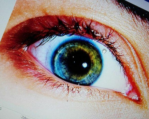 Human Eye Eyelash Human Body Part Eyeshadow Looking At Camera Close-up Portrait Beauty Eyeball