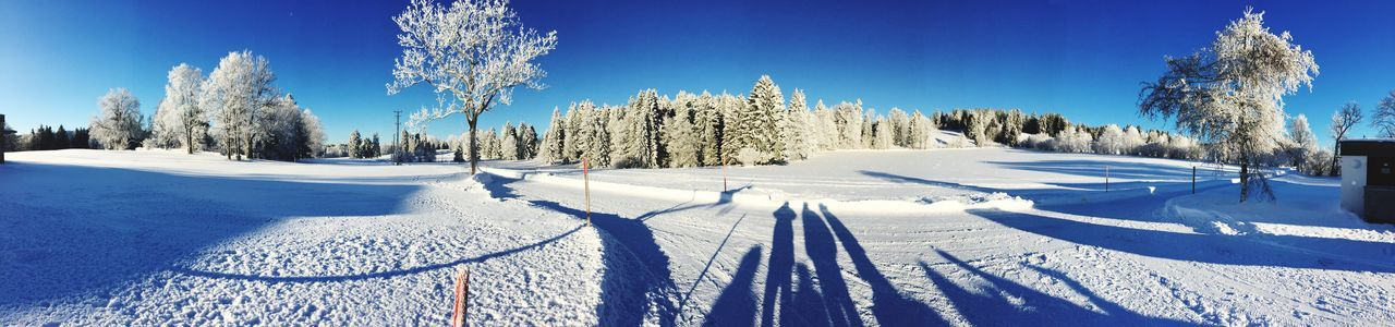 Nature Sky Landscape Tree Winter Blue Shadow Sunlight Snow Day Outdoors Tranquility Panoramic Clear Sky Scenics Beauty In Nature No People White Color Tranquil Scene Cold Temperature EyeEm Selects Shades Of Winter