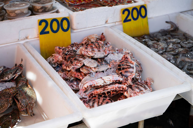 View of fish for sale at market stall
