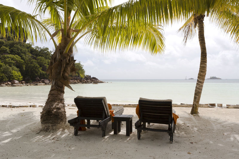 Water Beach Sea Tropical Climate Palm Tree Tree Land Chair Beauty In Nature Sand Plant Seat Sky Tranquility Tranquil Scene Nature Scenics - Nature Horizon Horizon Over Water No People Outdoors Palm Leaf Coconut Palm Tree Seychelles