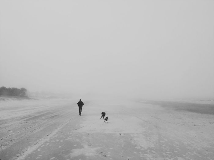People walking on snow covered landscape against sky