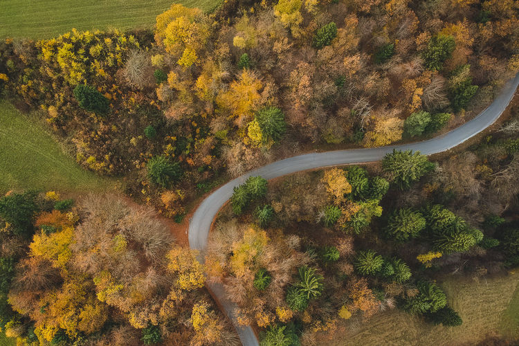 Above Aerial Autumn Beautiful Colorful Colors Driving Drone  Fall Forest Green High Landscape Nature Old Timer Photo Photography Retro Road Rural Summer Top Travel Tree View Vintage Yellow Plant Beauty In Nature Scenics - Nature No People High Angle View Day Transportation Non-urban Scene Tranquility Environment Tranquil Scene Growth Land Curve Outdoors Change