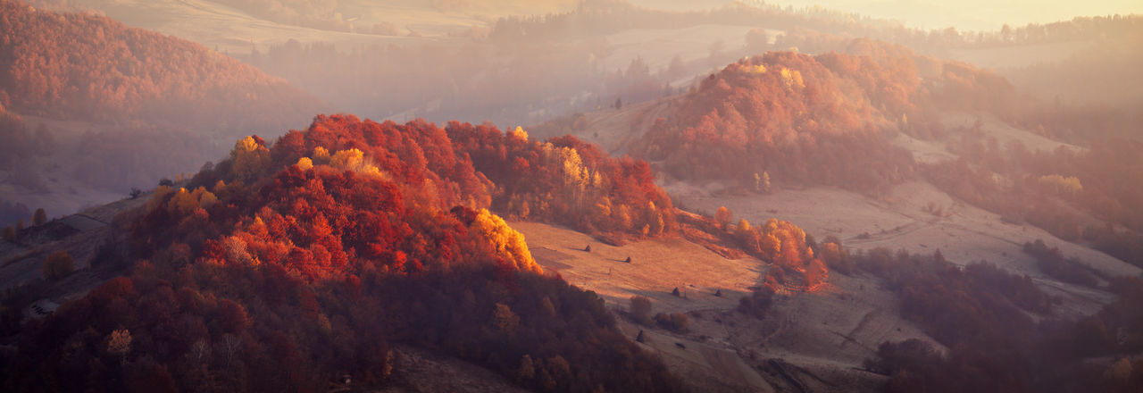 Autumn Autumn Colors Hills Morning Natural November Panoramic Wildlife & Nature WoodLand Forest Meadow Mist Mountain Range Mountains Relict Sunlight And Shadow Sunrise Woods