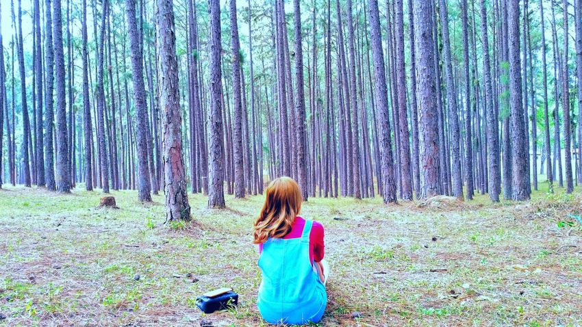 Peacefullon the pine trees Suansun Fresh Littergirl RedShirt  Doi Hot Chiangmai Good Trip Coupletrip