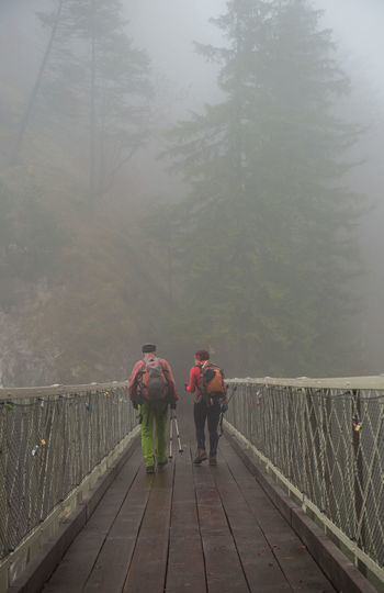 Bridge and Fog in forest Rear View Real People Fog Full Length Railing Men Leisure Activity Nature Day Lifestyles Tree Walking People Group Of People The Way Forward Beauty In Nature Plant Bridge Adult Footbridge Outdoors