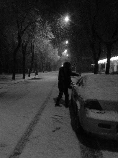 Pakruojis Snow Snowing Cold