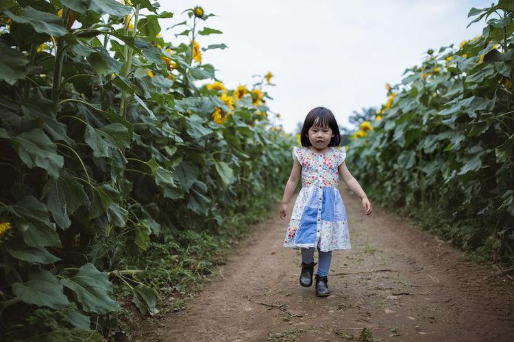Full length of girl walking amidst plants