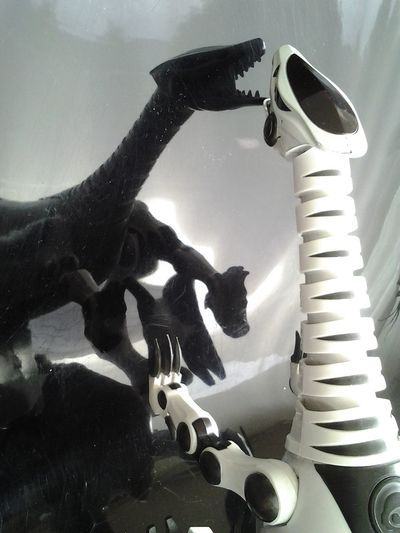 Abstract Photography Remote Control Animal Robots Black And White Dinasour Selfie Dinasour Shaped Reflections And Shadows Robot Toy