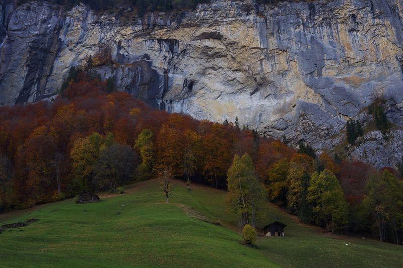Alps,