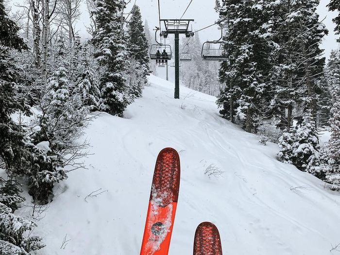 storm skiing. Utah Wasatch Mountains Deer Valley Utah Park City Utah Snow Winter Cold Temperature Tree Nature Day White Color